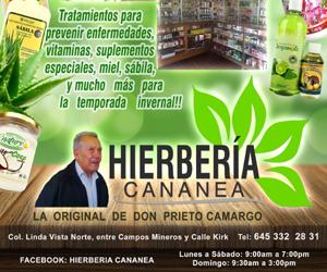 hierberia-cananea-slyde-2